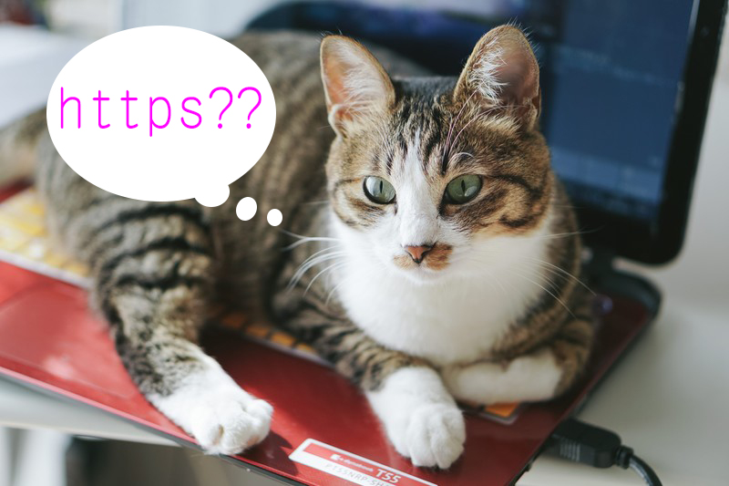 楽天、完全HTTPS化に!…いまさらだけどHTTPSって何?